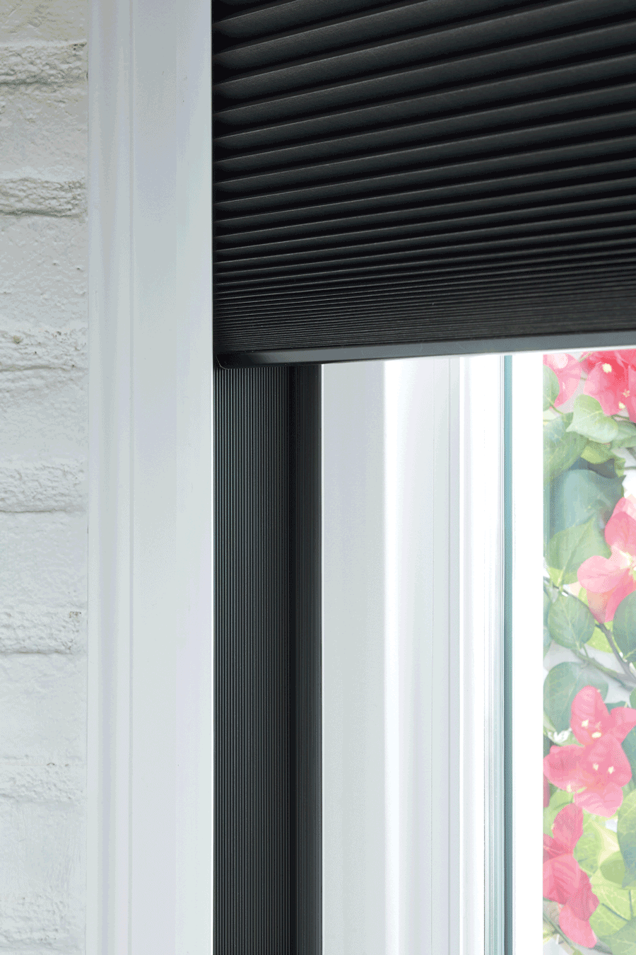 duette honeycomb shades  best blackout shades Hunter Douglas San Antonio 78249