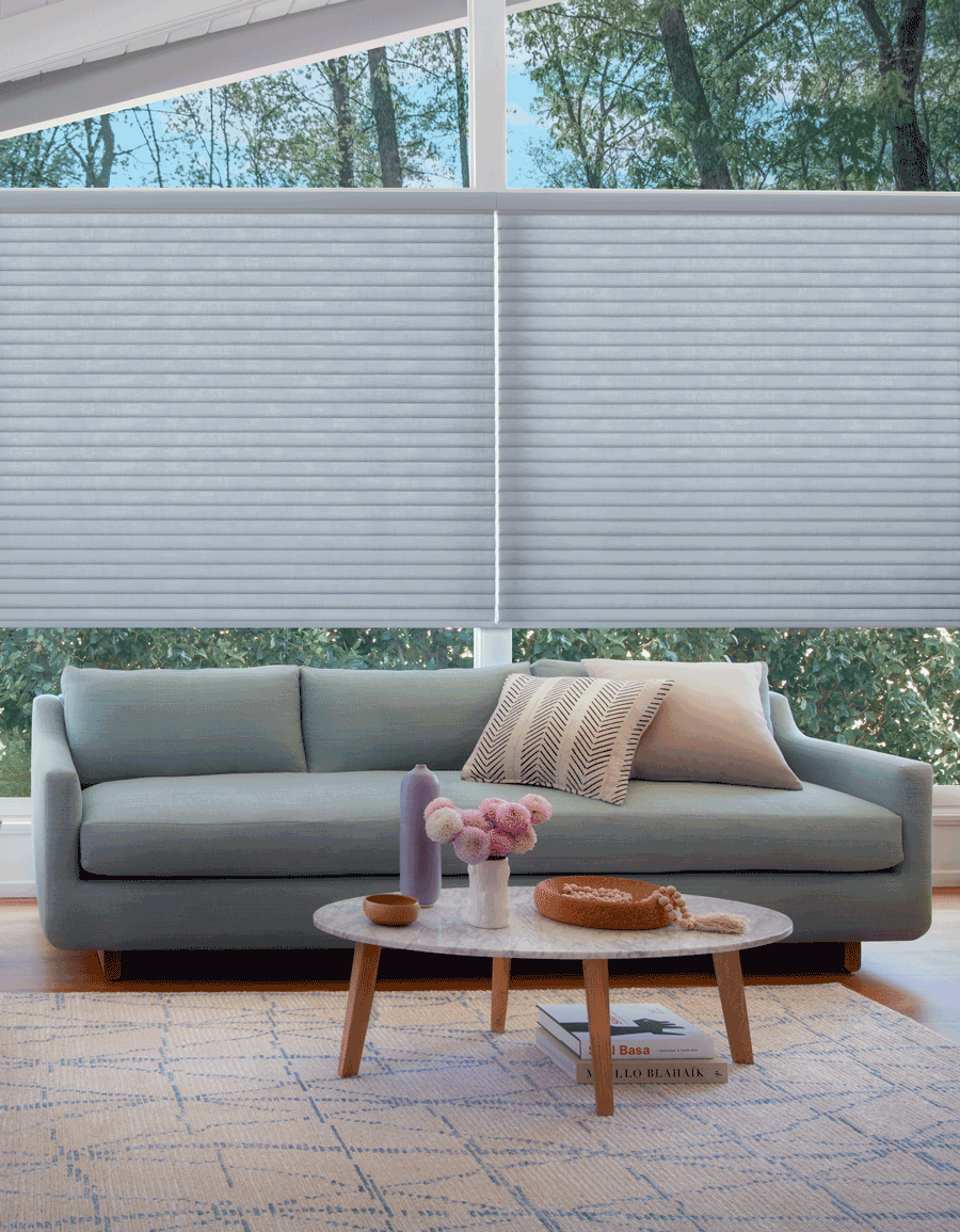 Living room sonnette shade Hunter Douglas San Antonio 78249