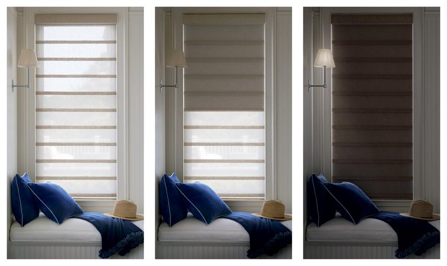 Hunter Douglas Duolite Dual Shades for light-filtering and room-darkening San Antonio 78249