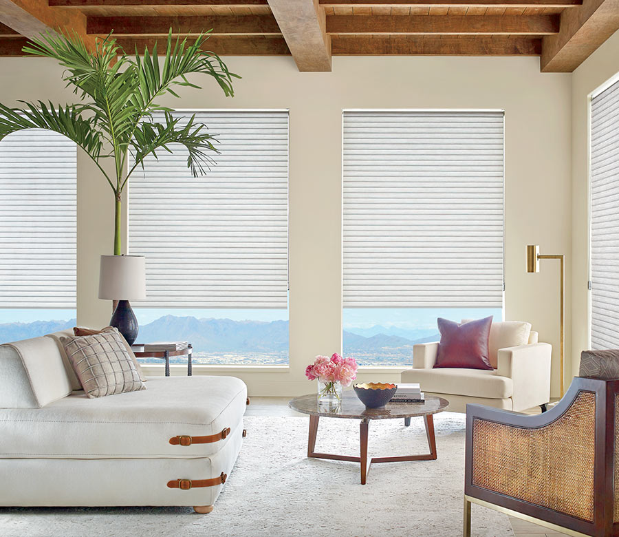 sonnette cellular shades in living room San Antonio, TX home
