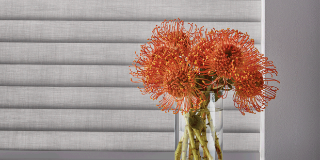 Living Coral Color of the Year 2019 Hunter Douglas San Antonio 78249