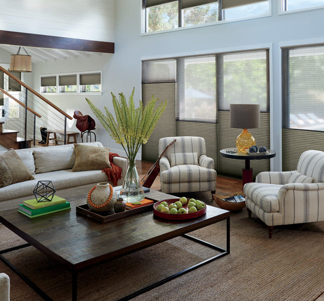 Hunter Douglas top down bottom up shades Duette honeycomb shades as automatic blinds San Antonio