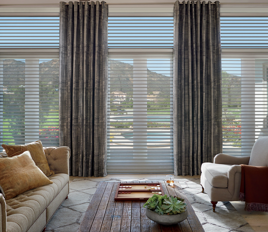 dynamic view through sheer Hunter Douglas silhouette shades San Antonio