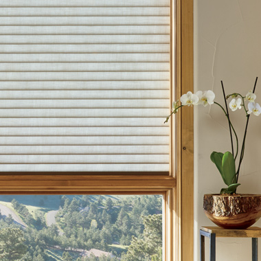 Hunter Douglas sonnette cellular roller shades San Antonio