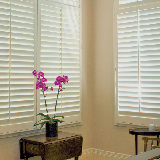 interior window shutters for big windows San Antonio