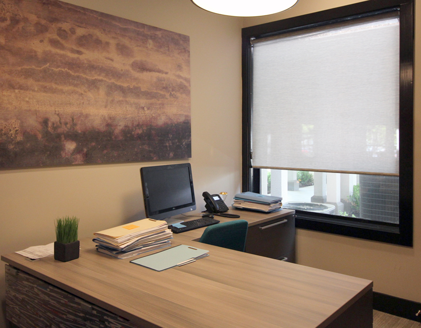 office designer roller shades hunter douglas San Antonio 78249