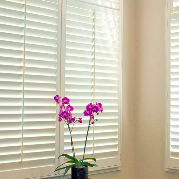white hardwood plantation shutters with pink flower in San Antonio 78249