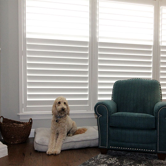 white living room shutters in San Antonio TX