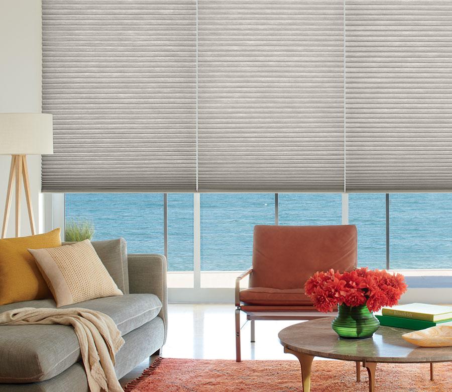 gray cellular shades in living room San Antonio TX