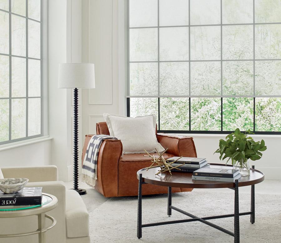 view through roller shadescontemporary living room in San Antonio TX