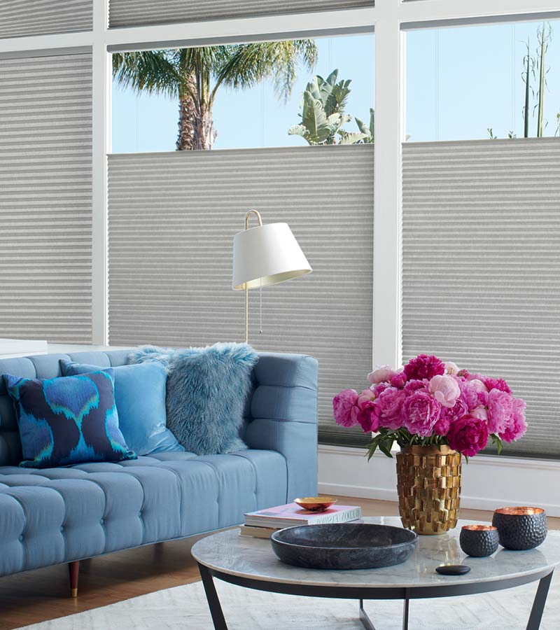 gray cellular shades with top down control on large windows in San Antonio TX