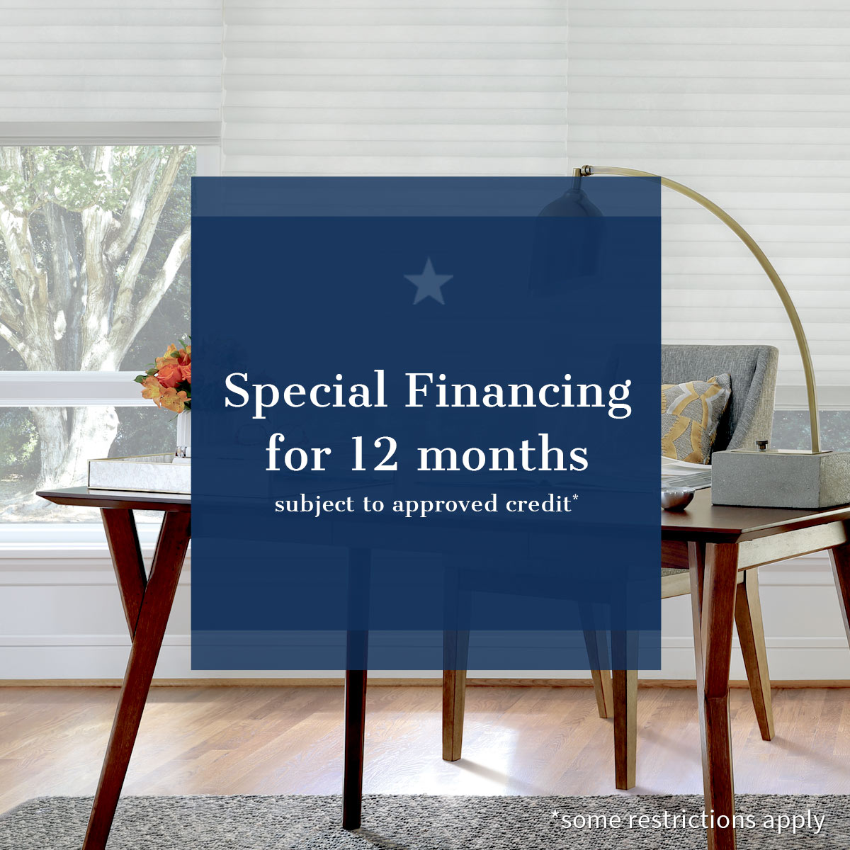 special financing for 12 months subject to approved credit