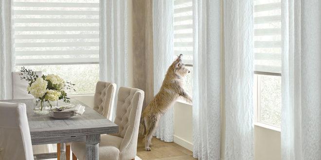 choosing pet friendly window coverings for San Antonio TX homes