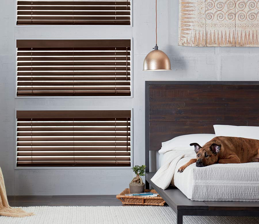 dog on white bed next to brown wooden shades
